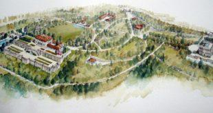 Silva Vujović - ilustracija