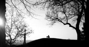 Kalemegdan (foto: Aleksandra Prhal)
