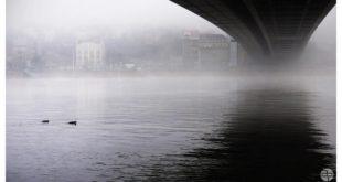 Sava (foto: Aleksandra Prhal)