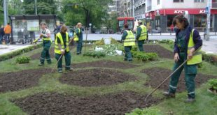 Zelenilo – Beograd: Uređenje grada