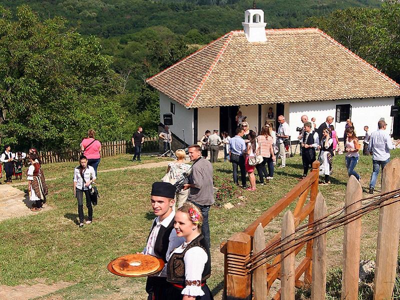Kuća vojvode Stepe Stepanovića