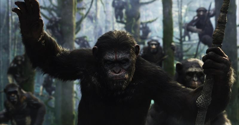 Planeta majmuna – Revolucija