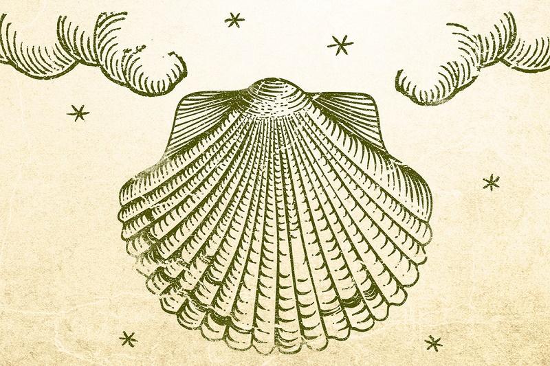 Laguna: Paulo Koeljo - Dnevnik jednog čarobnjaka