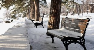 Beograd - zima