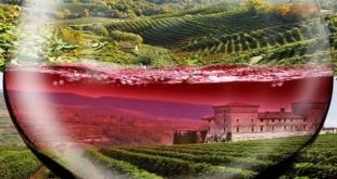 Balkan Wine Expo