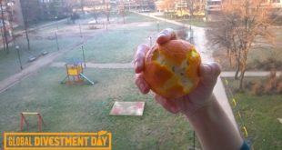Šta hoćeš: Pomorandžama protiv promene klime