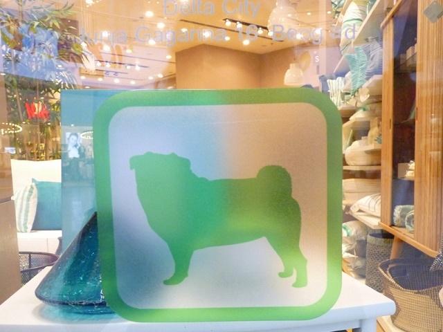 Dog Friendly - Delta City