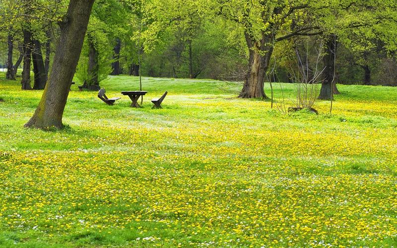 Proleće u Beogradu: Ada Ciganlija