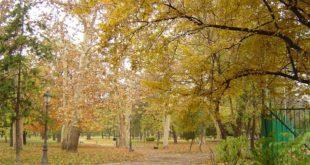 Gradski park u Zemunu (foto: Wikimedia - Matija sa VMO)