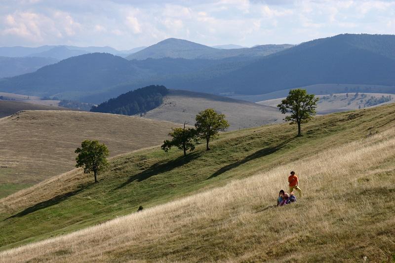 Zlatibor (foto: B. Jovanović)