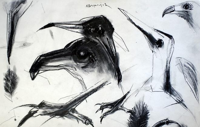 """Izložba """"Crteži – kljunovi i kandže"""" - Dragoljub Varajić"""