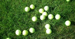 Vimbldon – engleska teniska institucija