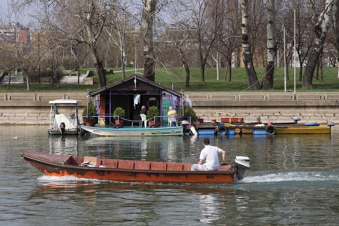 Sava (foto: D. Bosnić)