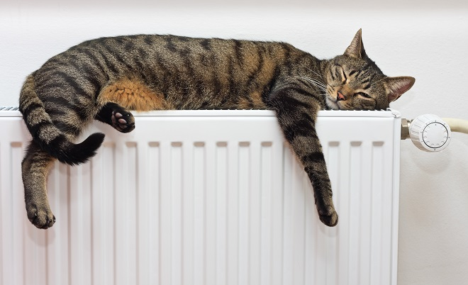 Proba sistema grejanja u Beogradu