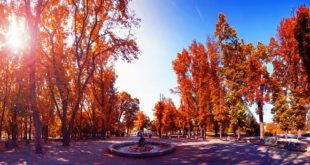 Jesen u Beogradu