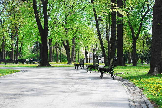 Leto u beogradskim parkovima