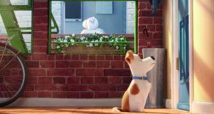 U bioskopima: Tajne avanture kućnih ljubimaca
