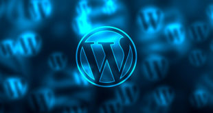 StartIt WordPress radionice