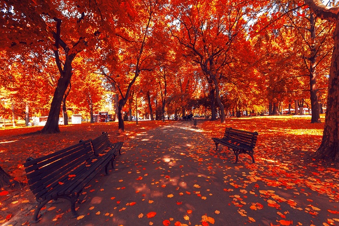 Jesen u Beogradu (foto: Shutterstock)