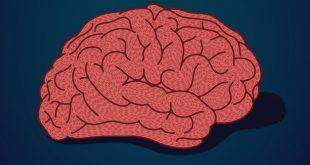 Nedelja svesti o mozgu