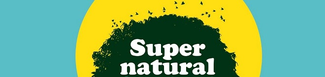 Supernatural festival 2017