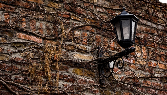15 predivnih fotografija Beograda (foto: Shutterstock)