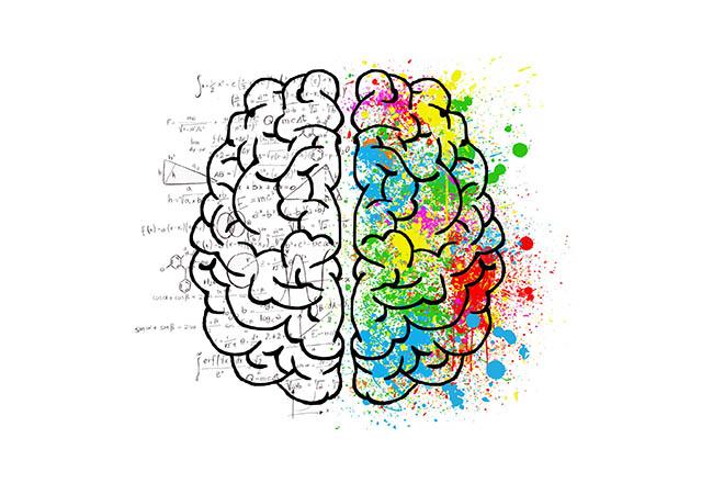 Vežbajte desnu polovinu mozga i - bićete kreativni(ji)
