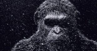 Planeta majmuna: Rat