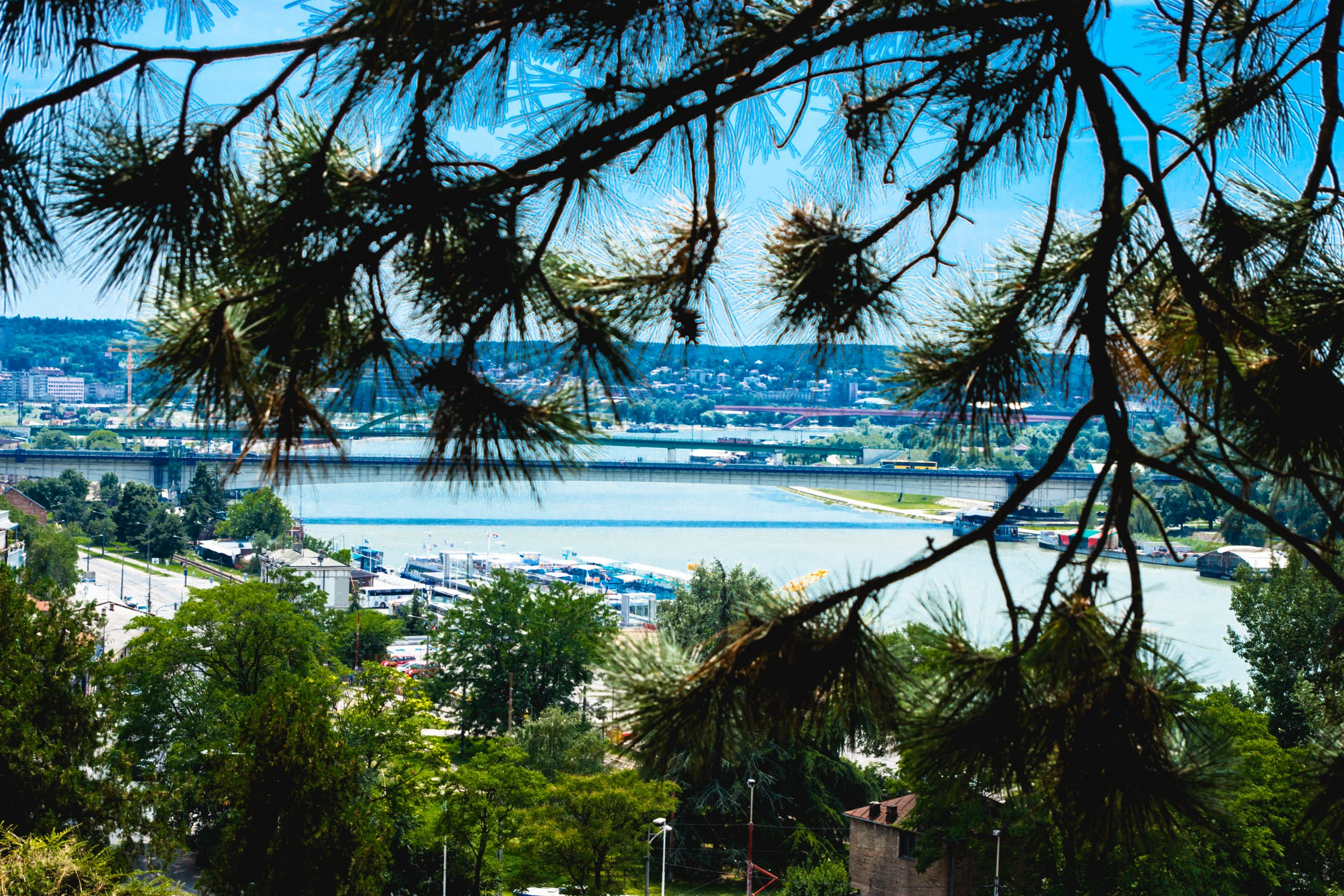 Sedam dana u Beogradu (6-12. jul 2017); foto: Shutterstock