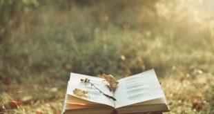 Beograđanka u Londonu: Šta znači zrnce poezije u svakodnevnom životu