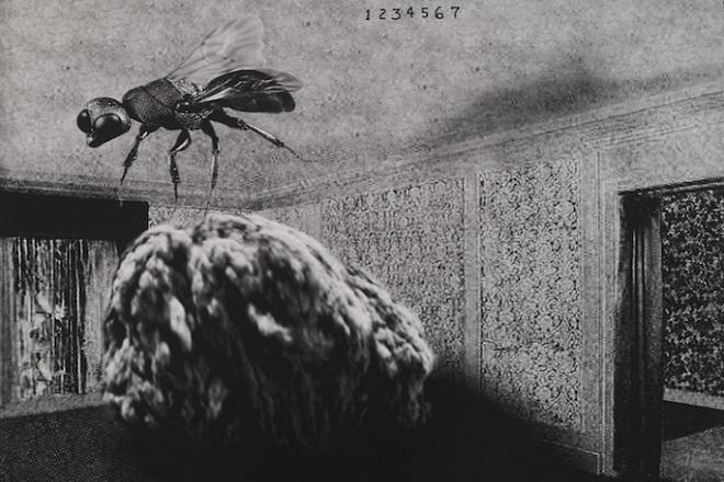 KCB: Dejvid Linč - Male priče (foto: Galerija Item, Pariz)