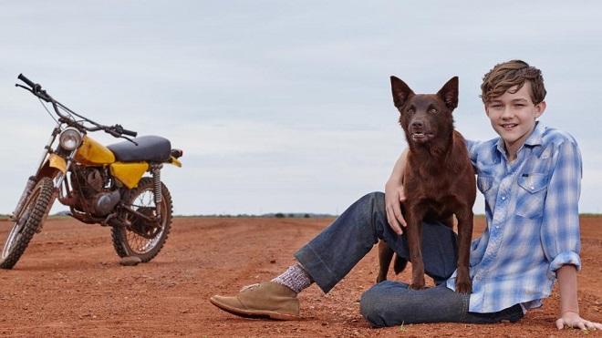 Novi filmovi: Crveni pas