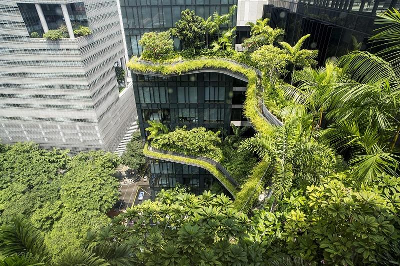 Mario del Kurto: Singapur, 2014.