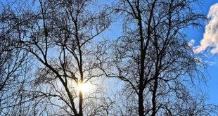 Sunce koristi zdravlju