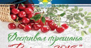Grocka: Ritopek 2018 - festival trešnje