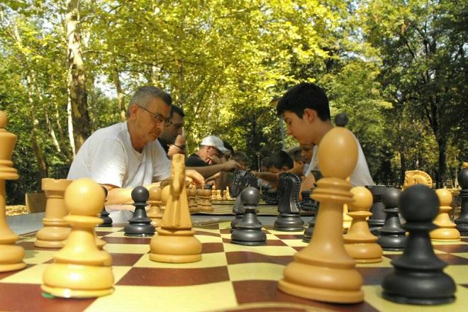 Drugi Bulevar šaha na Savskom vencu