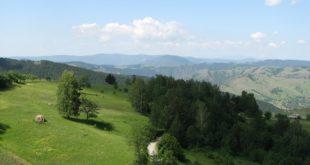 Vidi Srbiju: Zlatibor (foto: Nedski; arhiva TOS-a)