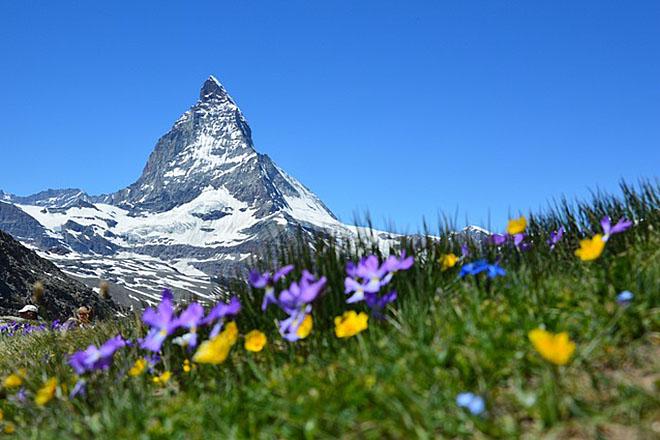 Nova Adresa Svajcarska Iseljenje U Svajcarsku Studiranje Gde