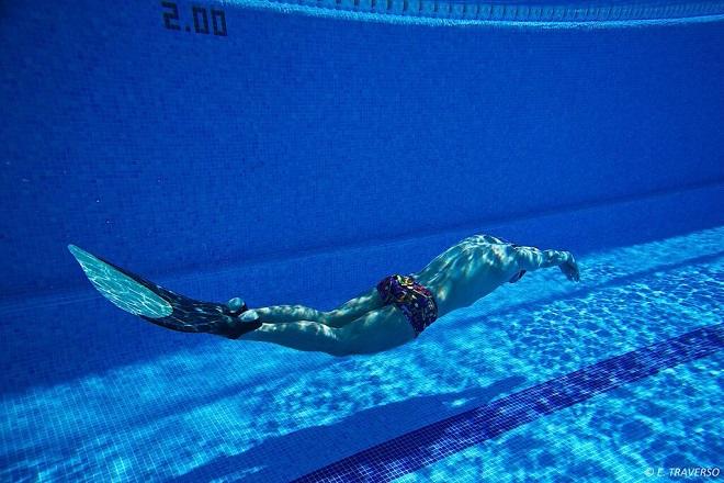 Svetsko prvenstvo u plivanju perajima i brzinskom ronjenju