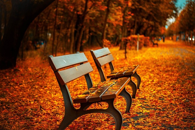 Sedam dana u Beogradu (20-26. septembar 2018): Jesen