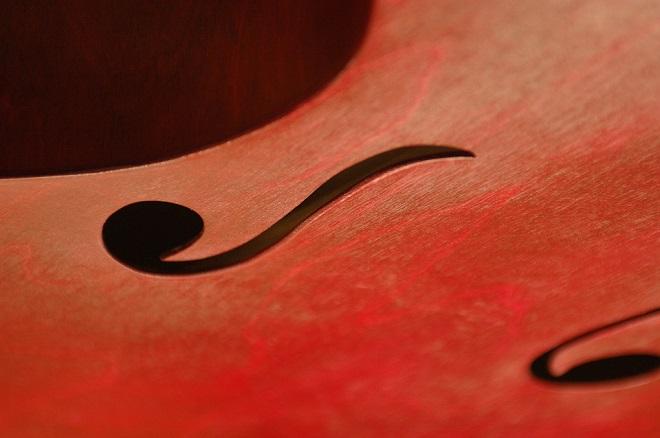 Zemunski kamerni orkestar: Novogodišnji koncert