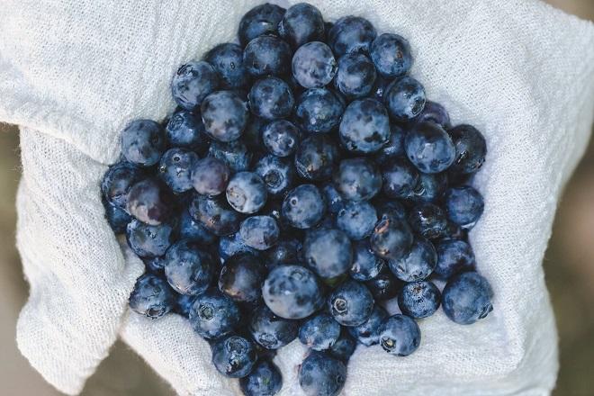 Zdrave namirnice obavezne u kuhinji: Borovnice