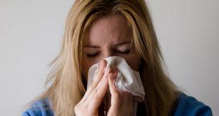 Koliko je alergija na polen neprijatna - zna sve više Beograđana