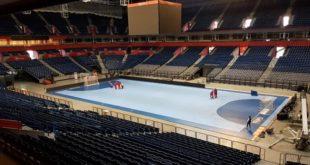 Rukomet: Srbija - Hrvatska (Štark arena; foto: rss.org.rs)