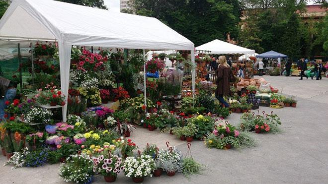 Tradicionalni sajam cveća u parku Manjež