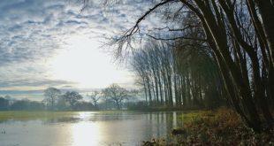 Pripravnost zbog mogućih poplava u Srbiji