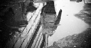 Beograd: Ugrožena leva obala Dunava