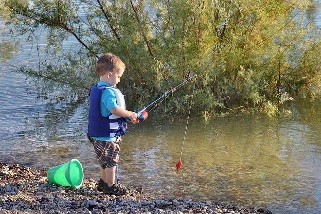 Pecanje u Beogradu i okolini