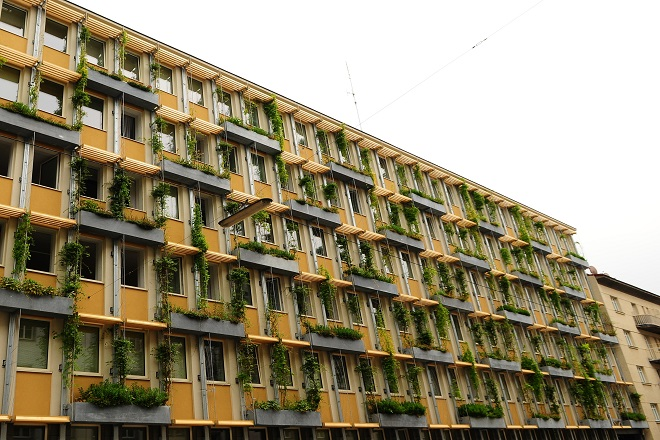 Beč: zelenim fasadama protiv klimatskih promena (foto: Josef Mikocki / MA 22)
