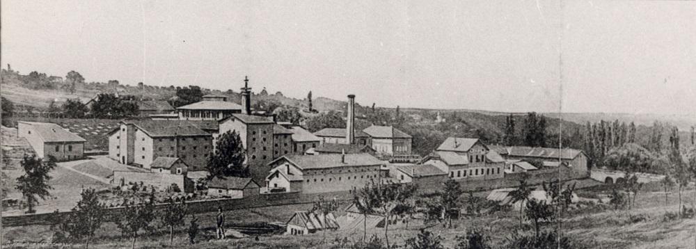 Tri veka pivarstva u Beogradu; Vajfertova pivara, 1884